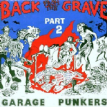VA. BACK FROM THE GRAVE VOL. 2 (LP) RARE MID 60s GARAGE PUNKERS ♪♪HEAR♪♪